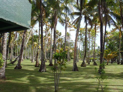 Pohnpei--Chuuk-218.JPG