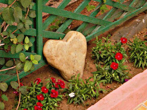 Une Pierre dans Mon Jardin; Un Cœur de Pierre