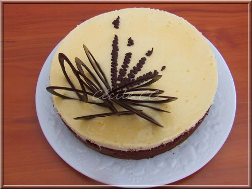 decoration gateau chocolat blanc