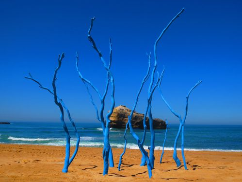 Xavier Ride Land Art Arbres Bleue Biarritz Plage (2)