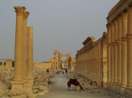 Palmyra (Siria)27