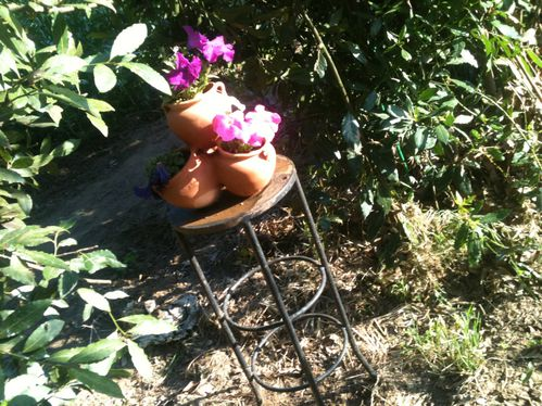 photo-jardin-1078.jpg