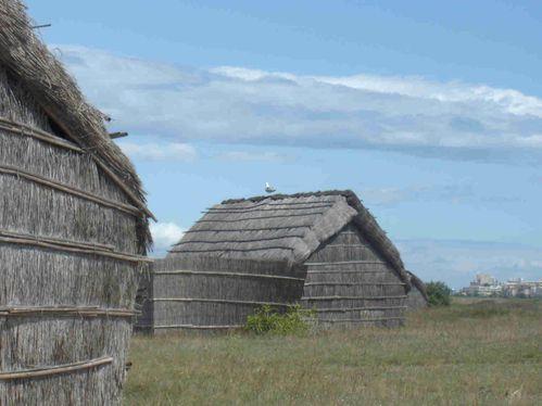 Les-cabanes-des-pecheurs-et-un-goeland-1-5.jpg