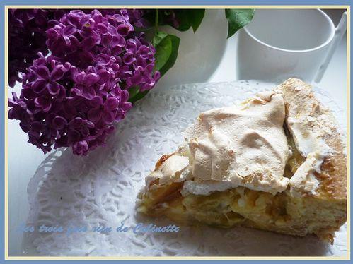 gateau-meringue-a-la-rhubarbe-01.JPG