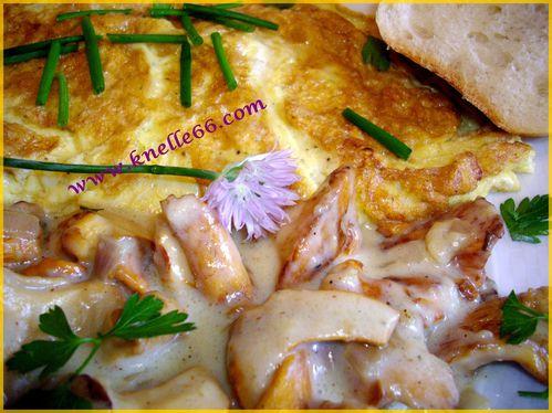 Girolles en sauce et son omelette 2