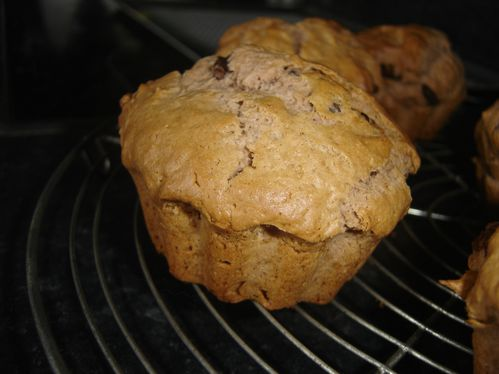 muffins cacao nutella ou speculoos (7)