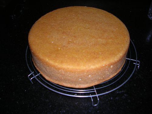 Biscuit-aux-fraises-003.JPG