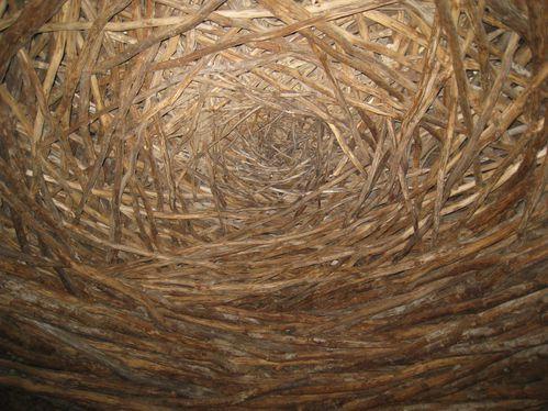 La Coste, Andy Goldsworthy, Oak Room, 2009