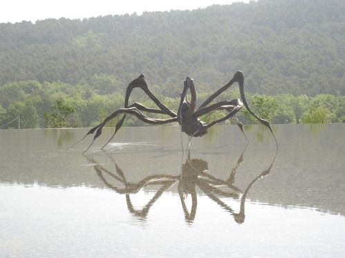 La Coste, Louise Bourgeois, Crouching Spider 6695, 2003