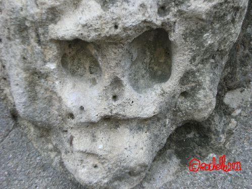 un mystérieux dolichocrâne au square du vert-galant à paris