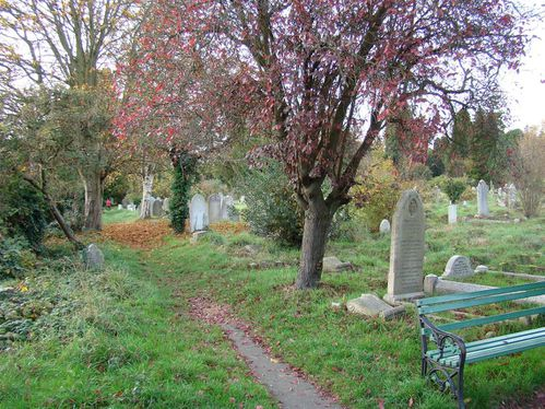 the old cemetery 17
