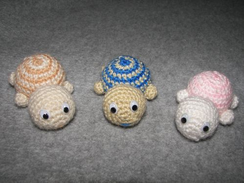 famille-tortues.JPG