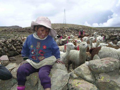 Arequipa-Perou (54)