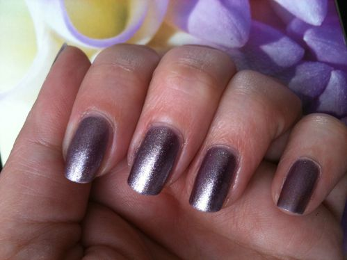 communion--vernis-mais-2012-107.JPG