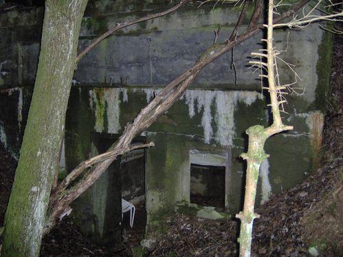 15mars2008 col de st marie aux mines 071