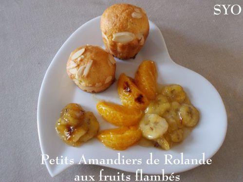 2014-02-Amandiers-de-Rolande-fruits-flambes-Mamigoz.JPG