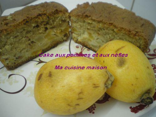 Cake-aux-pommes-et-nefles--2-.JPG
