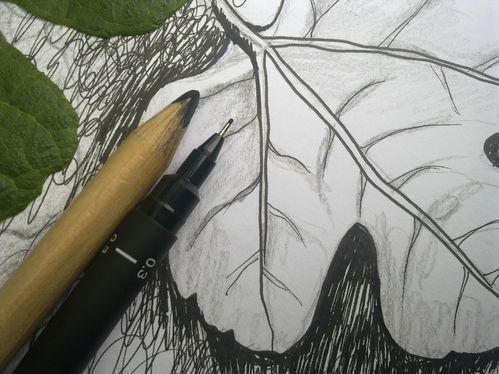sketch book 005