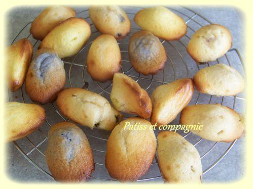 madeleines au yaourt multigout3