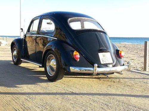 escarabajo-1200-6-copia-1.jpg