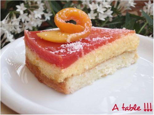 Gâteau-mousse à la mangue4