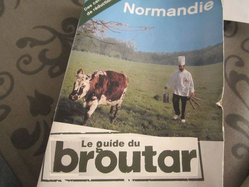 guide-routard-normandie-vache-meuh