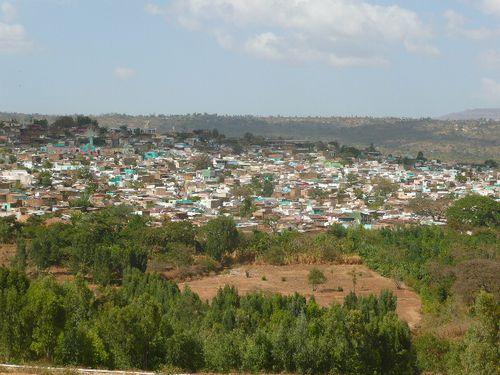 A Harar, ville des hyènes en tous genres!