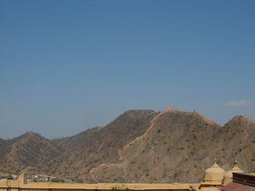amber montagne