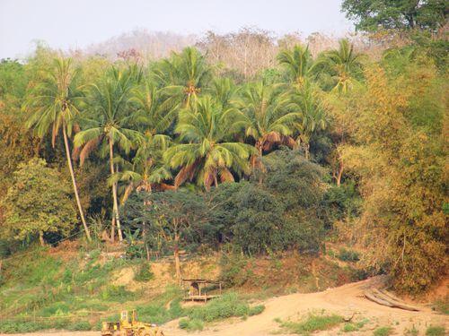 Laos-2011 7382