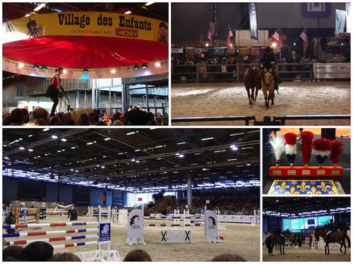 salon_du_cheval_2012_.jpg