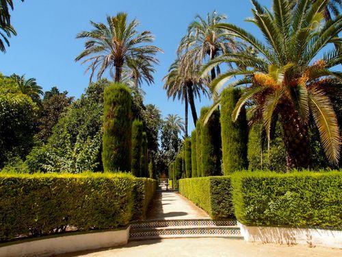 jardins-alcazar-séville-018