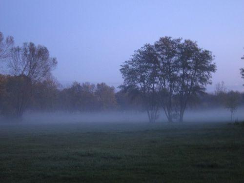 Tregastel---Brouillard--Loire-Nov-14-014.JPG