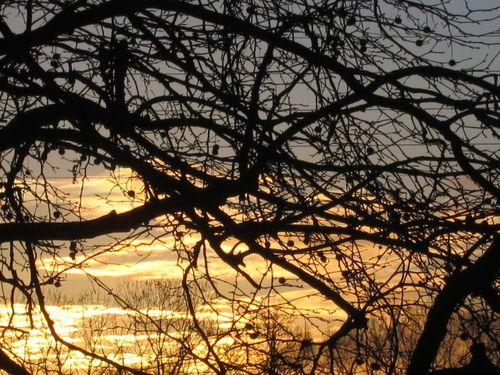 soleil-18.03.2013-010.JPG