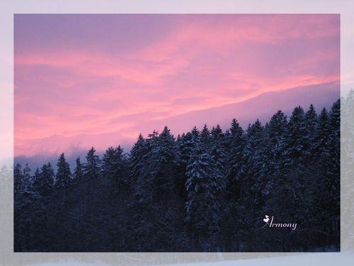 ciel rose 1