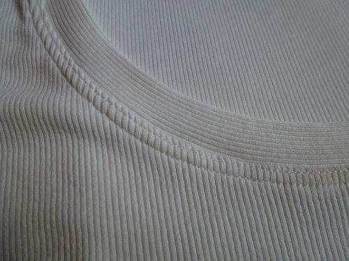 2014-01-08-Plantain-blanc-2