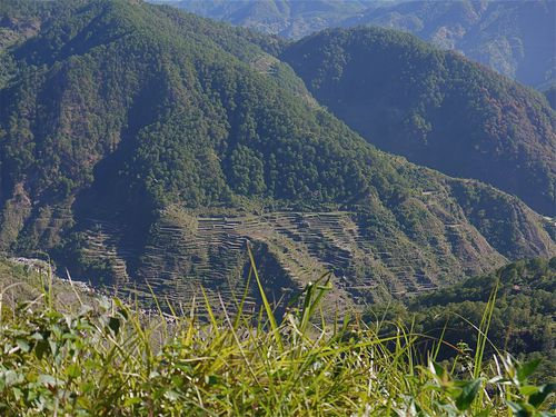 au-dessus-de-sagada--rizieres.jpg