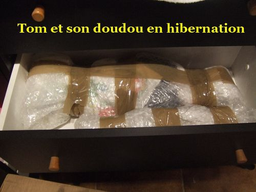 TOM-ET-SON-DOUDOU-HIBERNATION--800x600-.JPG