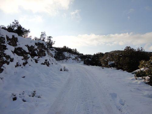 neige-bessillon--8-.JPG