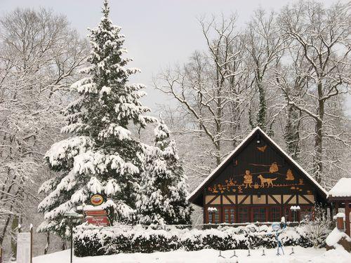 le-Gros-Chene-sous-la-neige-dec-2010-4557.JPG