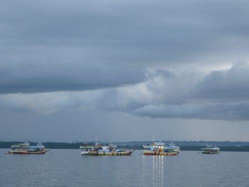 Sulawesi13-Kendar (40)1