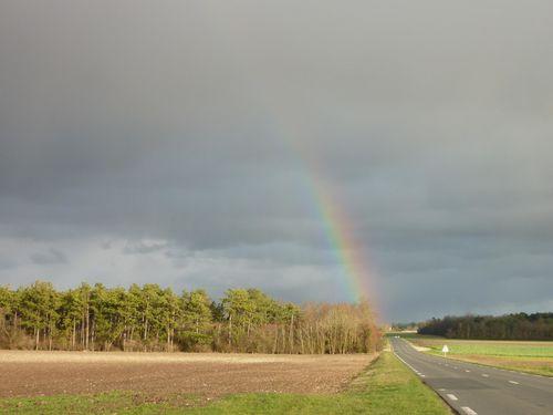 ciel de décembre 2011 (5)