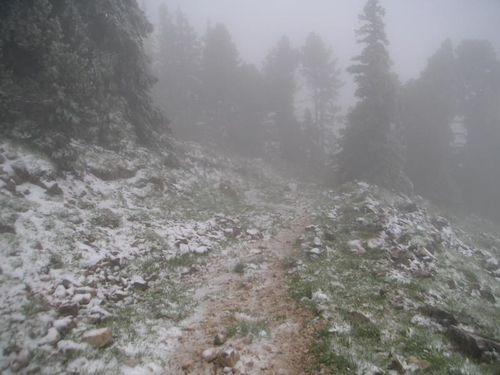 neige_gresilfroid_ventbrouillard.jpg