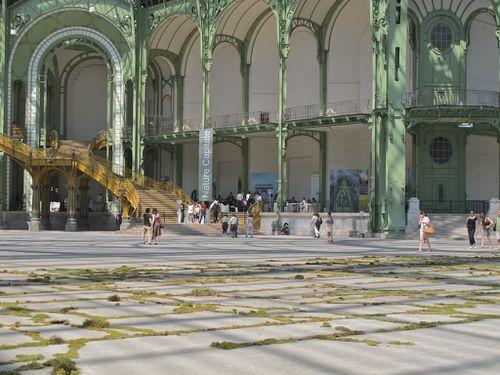 Nature-Capitale-Grand-Palais-5269-copie-1.jpg