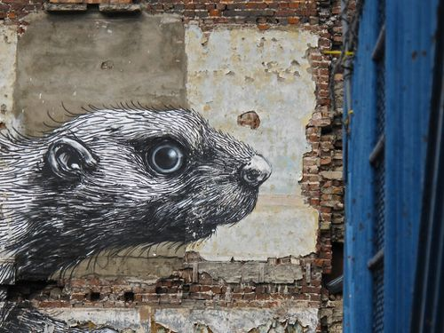 Londres street-art Hackney Roa rat 7