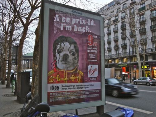 affiche Virgin mobile Jackson chien