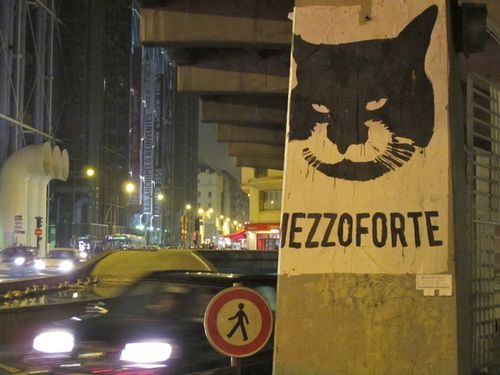 chat-street-art-MezzoForte.jpg