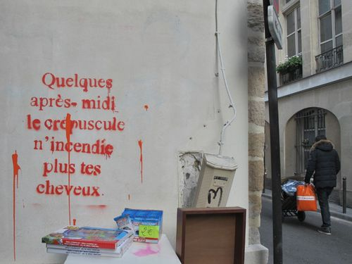 street-art THTF crpuscule cheveux 8486