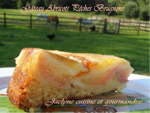 Gâteau moelleux aux abricots pêches brugnons Jaclyne cuisine et gourmandise