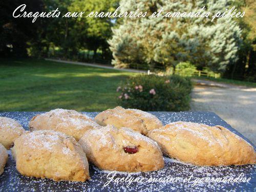 Croquets aux cranberries et amandes pilées Jaclyne cuisine et gourmandise