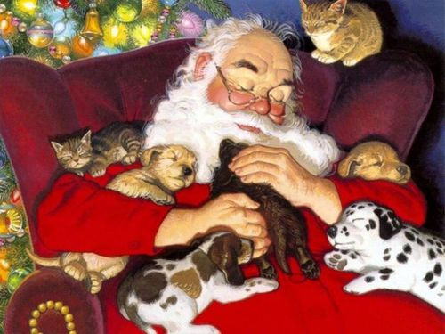 pere noel chiots chatons